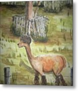 Alpaca Glory Metal Print