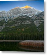 Alpenglow Over Frosty Reeds Metal Print