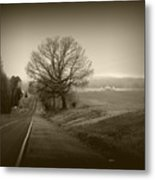 Alpha Tree Metal Print