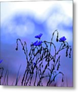 Montana Blue Bells Metal Print