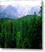 Alpine Forest Metal Print