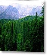 Alpine Forest Metal Print