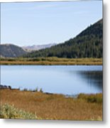 Alpine Lake In The Arapahoe National Forest Metal Print