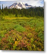 Alpine Meadows Metal Print