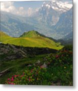Alpine Roses In Foreground Metal Print