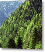 Alpine View In Green Metal Print