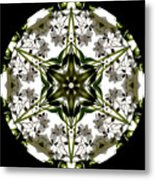 Alstroemeria Wild 1 Metal Print