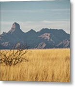 Altar Valley  Metal Print