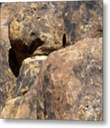 Alternate Composition Metal Print
