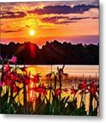 Amaryllis At Sunrise Over Lake Metal Print