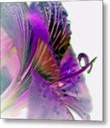 Amaryllis Butterfly II Metal Print
