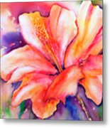 Amaryllis Flower Metal Print