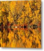 Amazing Autumn Metal Print