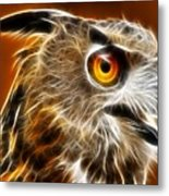 Amazing Owl Portrait Metal Print