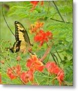 Amazonia Butterfly Metal Print