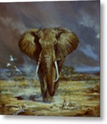 Amboseli Bull Elephant Metal Print