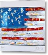 America Edition 4 Metal Print