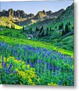 American Basin In Bloom Metal Print