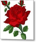 American Beauty Rose Metal Print
