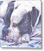American Bulldog Christmas Metal Print