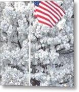 American Flag Snow  Metal Print