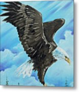 American Flight Metal Print