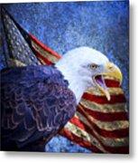 American Freedom  Metal Print by Nicole Markmann Nelson