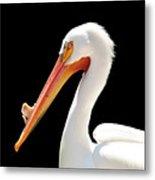 American Pelican Metal Print