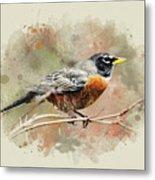 American Robin - Watercolor Art Metal Print