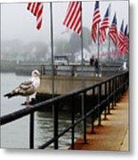 American Seagull Metal Print