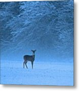 Amidst The Swirling Snow Metal Print
