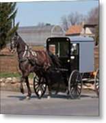 Amish Buggy And High Stepper Metal Print