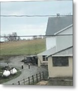 Amish Children Walk To The Barn Metal Print