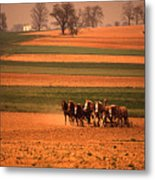 Amish Country Farm Landscape Metal Print