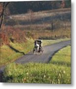 Amish Country Horse And Buggy In Autumn Metal Print