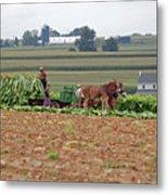 Amish Farm Harvest Metal Print by Joyce Huhra