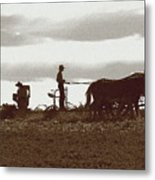 Amish Farmer 2 Metal Print