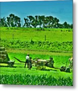 Amish Gathering Hay Metal Print