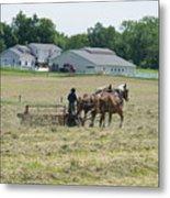 Amish Girl Raking Hay Photo Metal Print