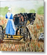 Amish Girl With Buggy Metal Print