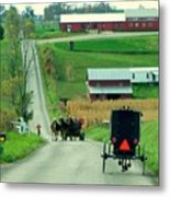 Amish Horse And Buggy Farm Metal Print