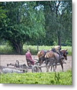 Amish Lady Disking Metal Print
