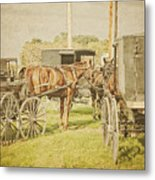 Amish Wagons Metal Print