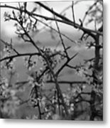 Among The Flowers Metal Print