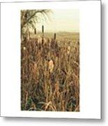 *among The Reeds  #landscape Metal Print
