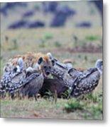 Among The Vultures 2 Metal Print
