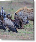 Among The Vultures 3 Metal Print