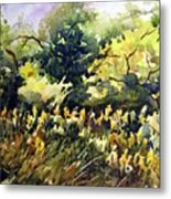 Amongst The Goldenrods Metal Print