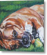 Amstaff With Ball Metal Print