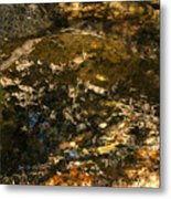 An Abstract Fall Reflection Metal Print
